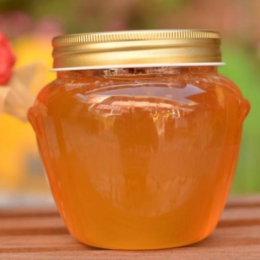 عسل جنگل دیبازر